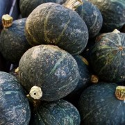 Black Forest Kabocha