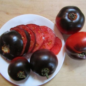 Slicing Tomatoes, Non-Red