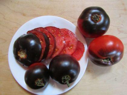 Indigo Apple Tomato Seeds