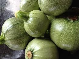 zucchini ronde de nice seeds