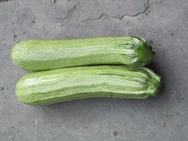 verde Chiaro D'Italia