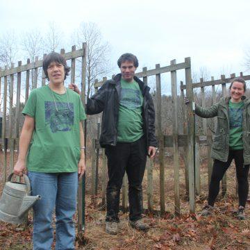 Women's Large Organic Cotton Green T-Shirts