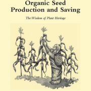 Org seed production and saving