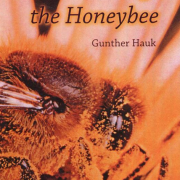 saving the honey bee