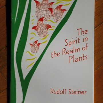 The Spirit in the Realm of Plants - Rudolf Steiner