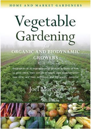 veg gardening