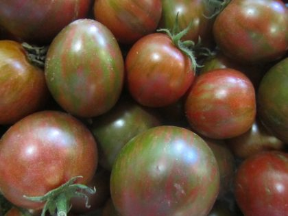 Purple Bumblebee Tomato Seeds