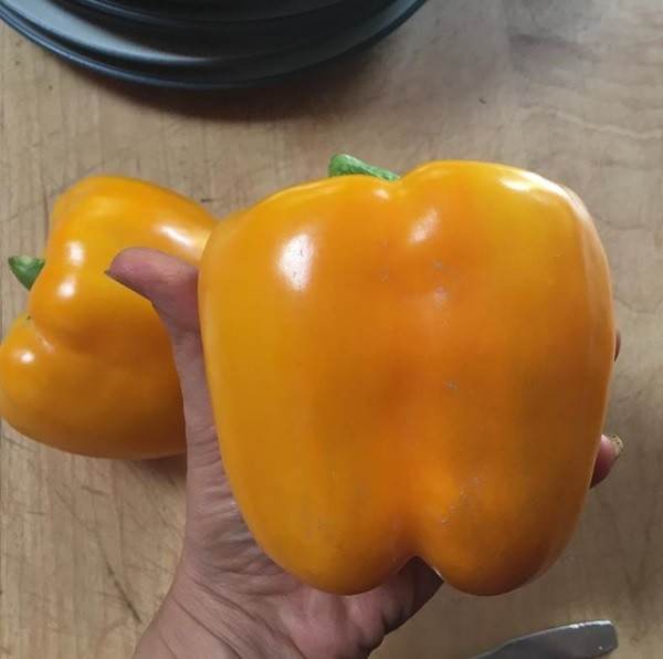 miracle of california gold-vegetable seeds Seeds of pepper 45 seeds